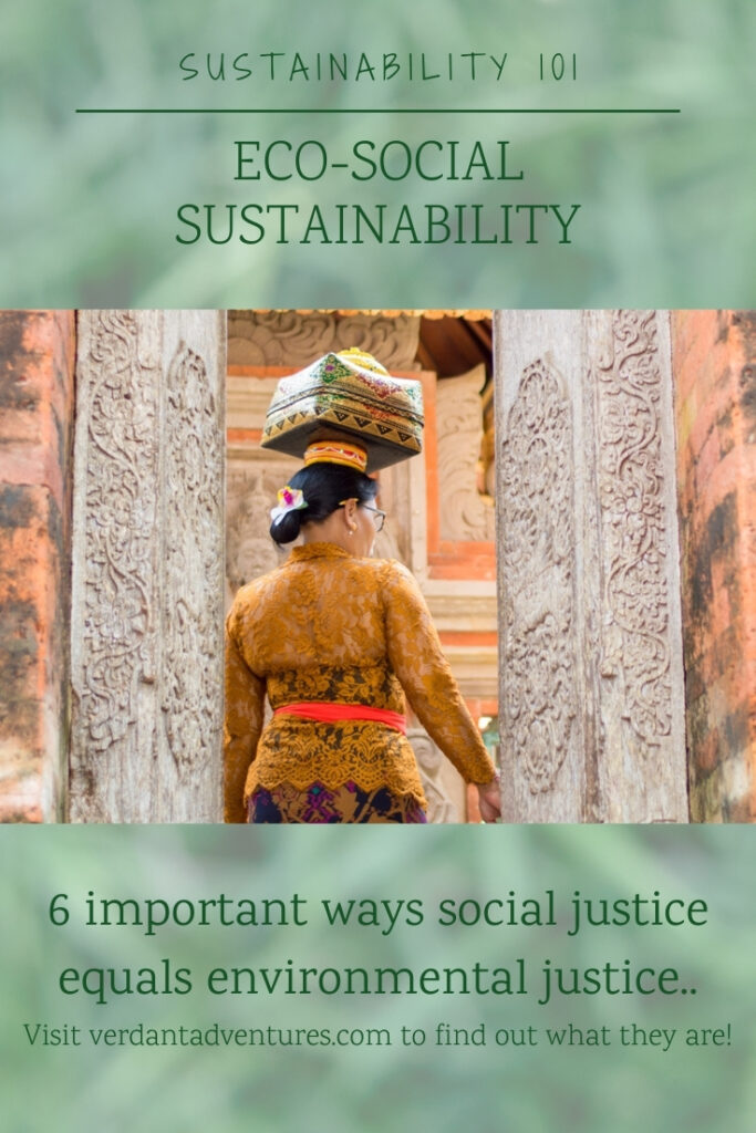 Eco-Social Sustainability pinterest image | sustainability 101