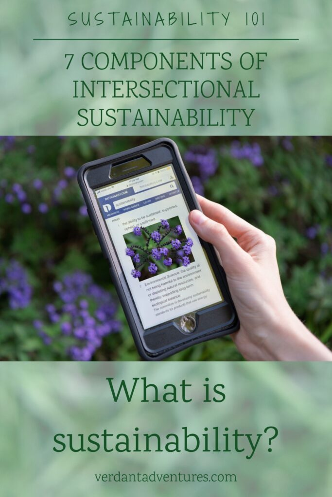 7 components of intersectional sustainability | sustainability 101