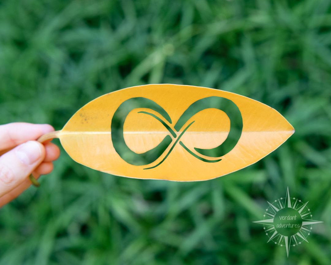 Infinity sign on leaf to represent sustainability