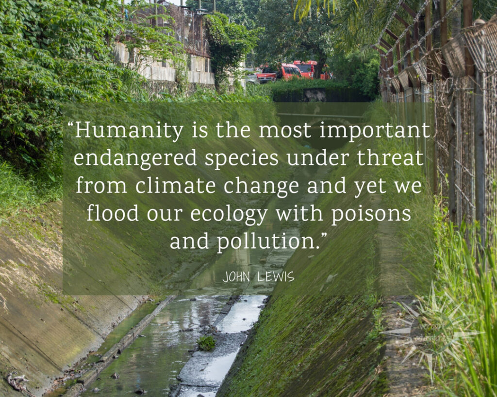 "Quote by John Lewis that says ""Humanity is the most important endangered species under threat from climate change and yet we flood our ecology with poisons and pollution."""